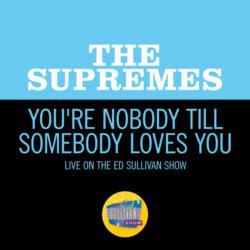 You're Nobody Till Somebody Loves You