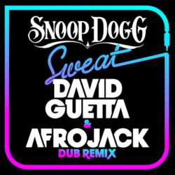 Sweat (David Guetta & Afrojack) [Dubstep Remix]